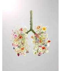 RespiriAMO: La Salute è nel Soffio – Percorso di recupero respiratorio, del gusto e olfatto