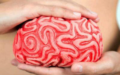 La salute e la bellezza nascono da dentro: l'intestino, il nostro secondo cervello
